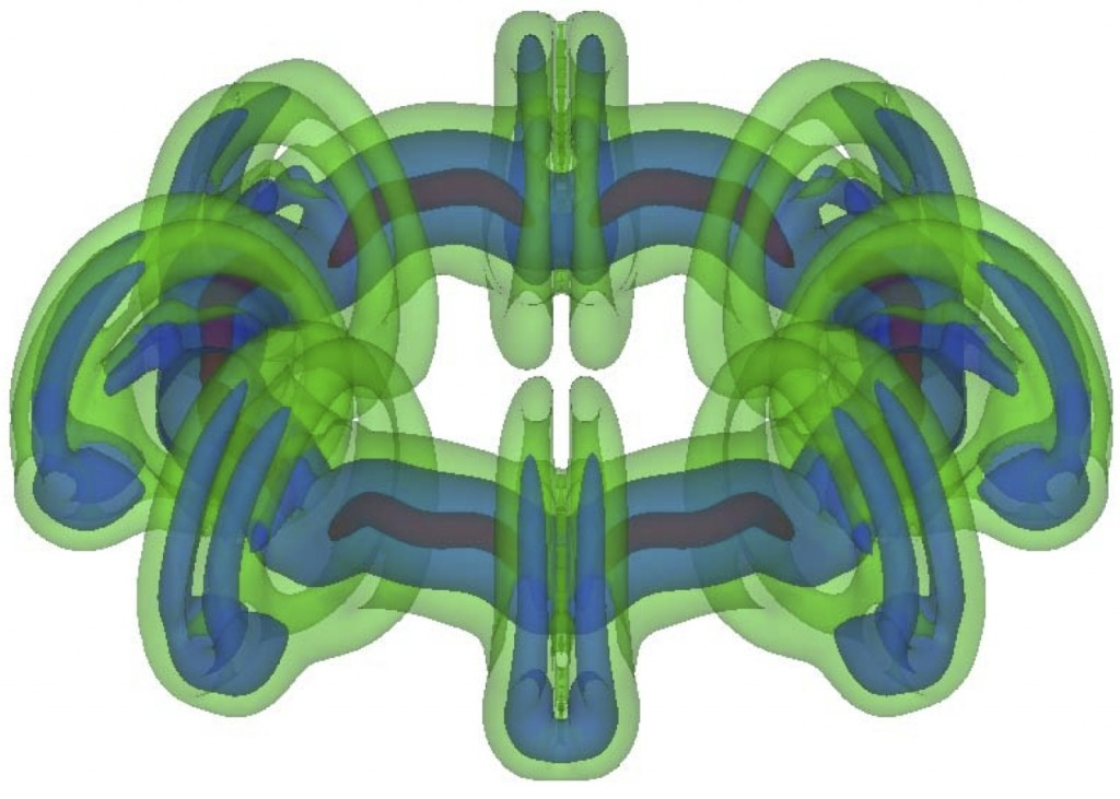 This picture illustrates the instability of a vortex ring. The ring was modeled as a circular disk vortex sheet with an imposed perturbation of azimuthal wavenumber m=8. The ring's motion was computed using a Lagrangian particle method and a treecode algorithm for fast evaluation of the induced velocity. The picture shows three isosurfaces of vorticity at a late time in the simulation. The results reveal details of the instability, in particular the relation between axial flow and collapse of the vortex core.