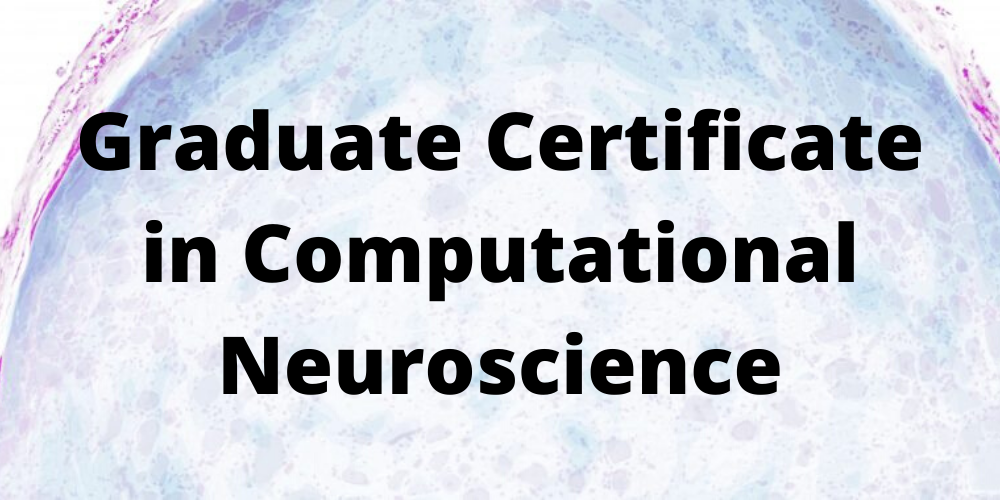 Graduate Certificate in Computational Neuroscience