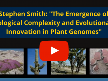 "Image of cactus plants with red ""play"" icon and text, ""Stephen Smith: 'The Emergence of Biological Complexity and Evolutionary Innovation in Plant Genomes'"""
