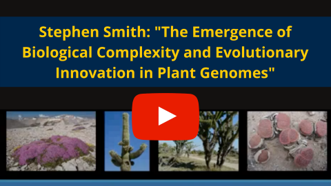 Emergence of Bio. Complexity & Evolutionary Innovation in Plant Genomes